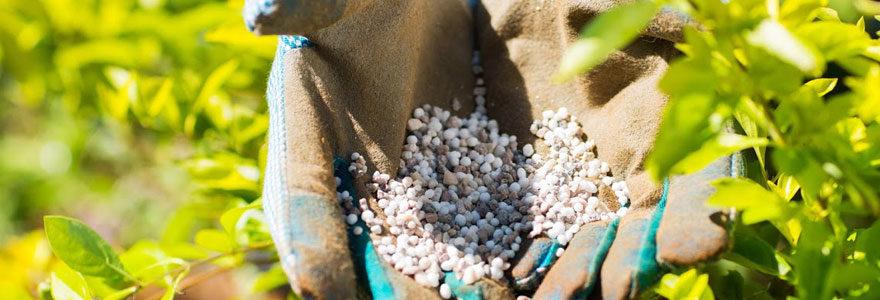 Engrais foliaires pour agriculteurs